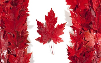 Canada: Reasons for Inadmissibility