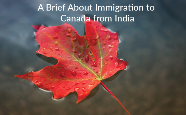 A Brief About Immigration to Canada from India