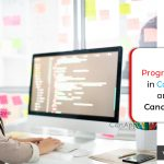 Programmer Analyst courses are offered in Canadian Institutes